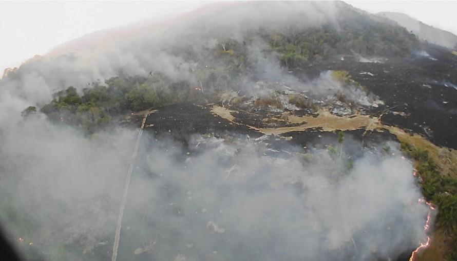 Tổng thống Brasil đáp trả các chỉ trích về thảm họa cháy rừng Amazon