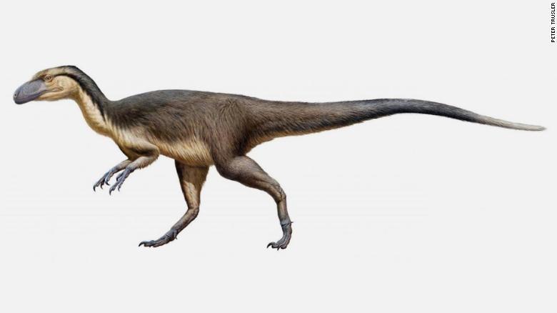 Tìm ra khủng long lông vũ sinh sống tại Nam Cực