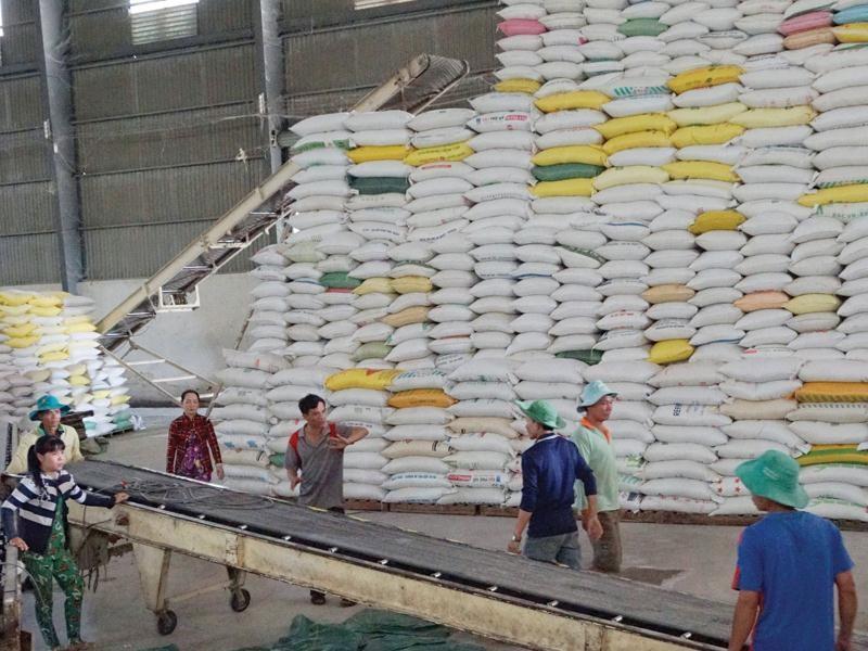 Việt Nam trúng thầu cung cấp 30 nghìn tấn gạo cho Philippines