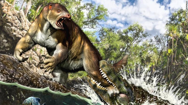 Quái thú tiền sử có lực cắn lớn nhất thế giới động vật