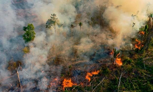 Rừng Amazon hứng chịu đám cháy tồi tệ nhất trong một thập kỷ