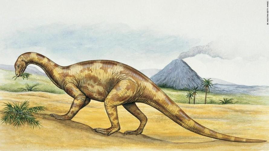 Loài khủng long Thecodontosaurus.