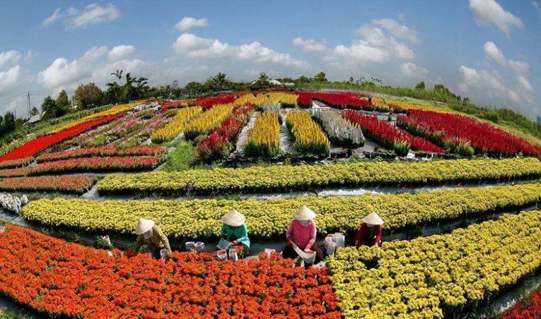 Du lịch Sa Đéc – không chỉ có làng hoa.