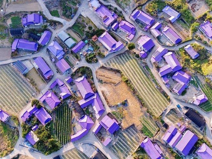 Du ngoạn hòn đảo màu tím của Hàn Quốc
