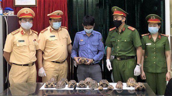 Nhân viên đường sắt vận chuyển 17 cá thể rùa quý hiếm