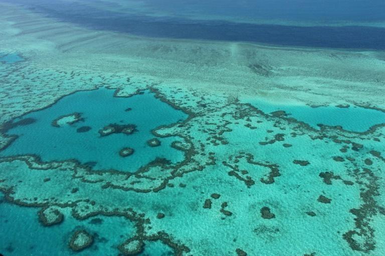 Australia và UNESCO tranh cãi về rạn san hô Great Barrier Reef