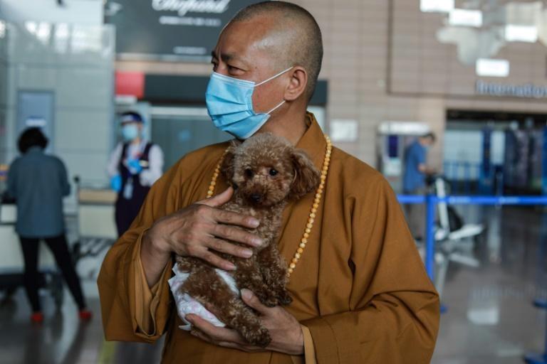 Sư Zhi Xiang ra sân bay tiễn một chú chó mình từng cưu mang ra nước ngoài. Ảnh: AFP