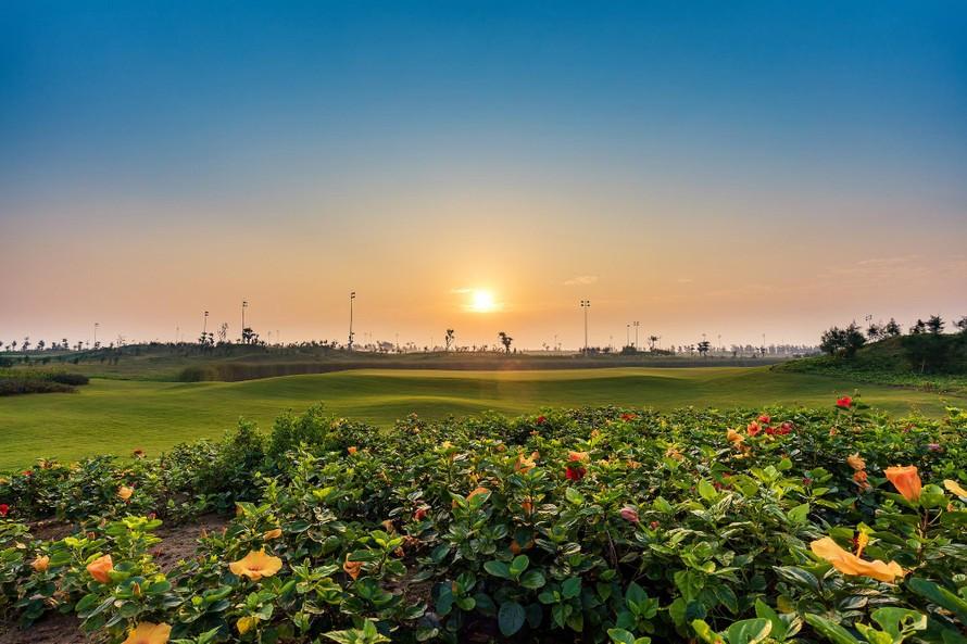 Sân golf tại quần thể nghỉ dưỡng FLC Sầm Sơn (Thanh Hoá).
