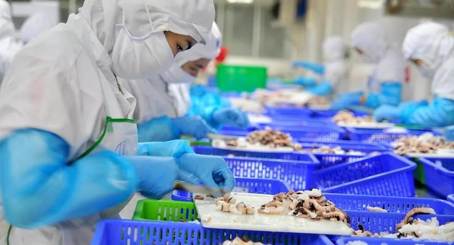 Gần 2,5 triệu lao động phía Nam phải ngừng việc do dịch COVID-19