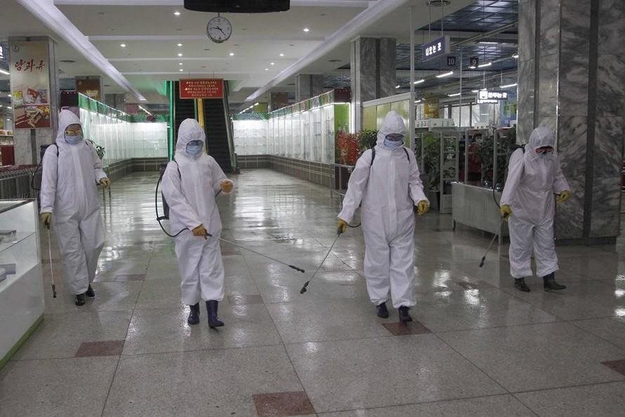 WHO chuẩn bị cung cấp vật tư chống dịch COVID-19 cho Triều Tiên