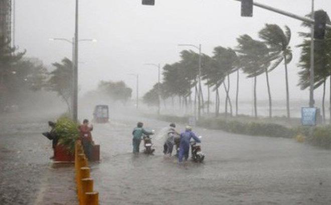 Hơn 4.600 trường hợp F0, F1 thuộc diện sơ tán riêng khi ứng phó bão số 7