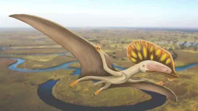 Hình ảnh mô tả loài khủng long mới.