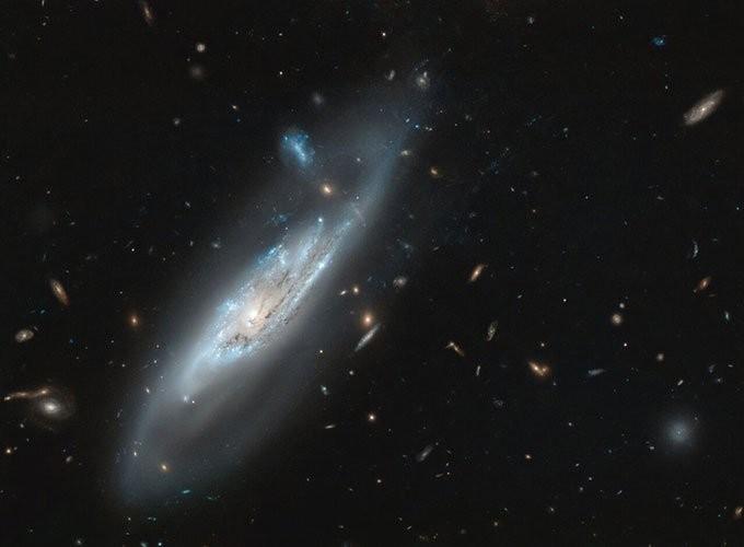 Thiên hà NGC 4848 chụp bởi Hubble. (Ảnh: NASA/ESA).