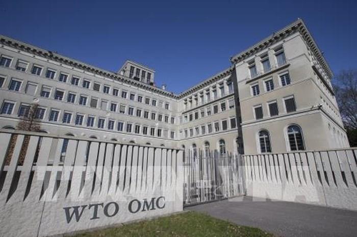 WTO: Dịch Covid-19 ảnh hưởng trực tiếp đến thương mại hàng hóa và dịch vụ toàn cầu