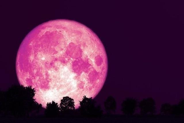 'Siêu trăng hồng' khiến thế giới thích thú