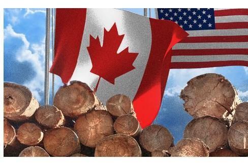 Mỹ và Canada mâu thuẫn về mức thuế đối với mặt hàng gỗ mềm