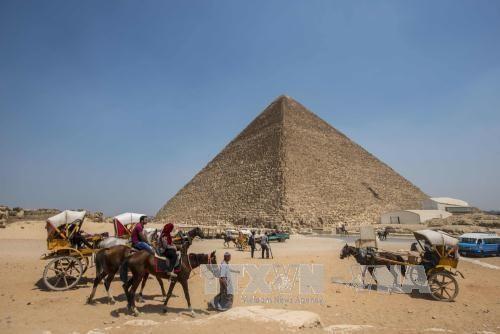 'Ai Cập sẽ là nền kinh tế lớn thứ 7 thế giới vào năm 2030'