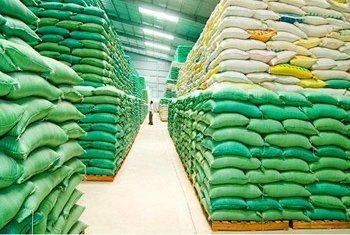 Xuất hơn 130.000 tấn gạo cho 24 tỉnh, thành phố hỗ trợ người dân gặp khó khăn do dịch COVID-19