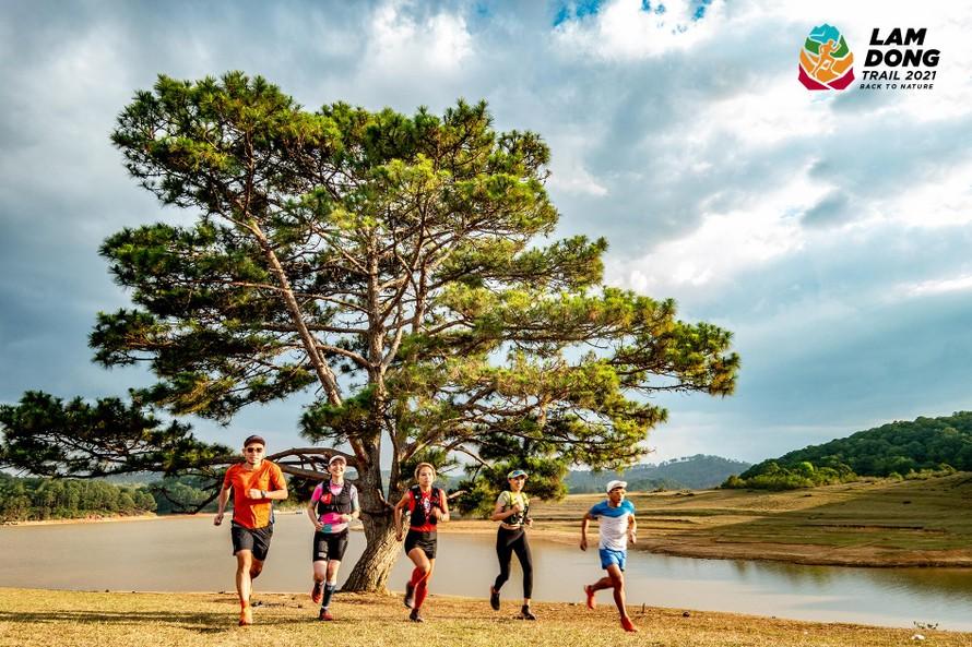 Lâm Đồng Trail 2021 - giải chạy địa hình về với thiên nhiên