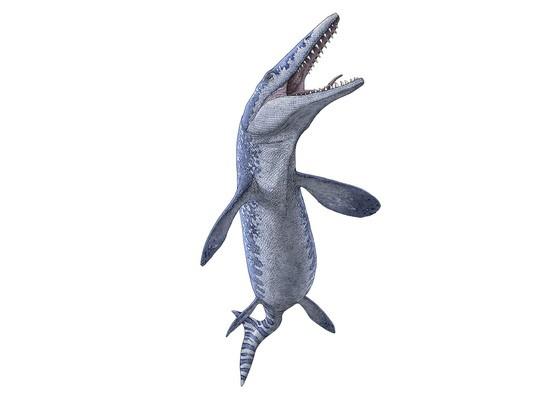 """Chân dung """"quái vật biển"""" được phục dựng từ bộ xương hóa thạch - Ảnh: Bảo tàng Khảo cổ học Hoàng gia Tyrrell"""