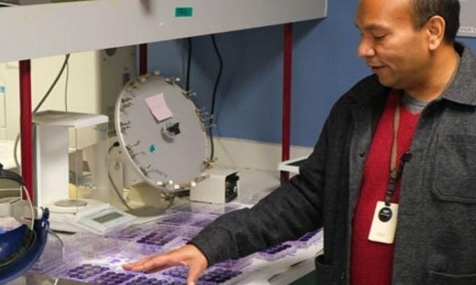 Giáo sư Chandra giới thiệu các hợp chất hứa hẹn trong điều trị COVID-19. - Ảnh: Phys.org.