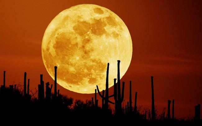 Siêu trăng sẽ xuất hiện vào tối thứ Năm tuần này. - Ảnh minh họa.