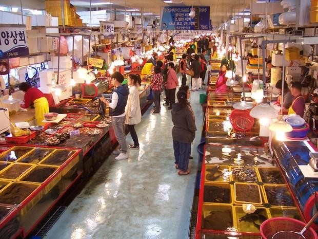 Chợ cá tại Busan.