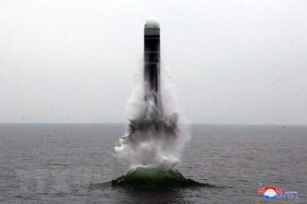 Triều Tiên phóng thử tên lửa kiểu mới Pukguksong-3 từ tàu ngầm ở ngoài khơi Vịnh Wonsan ra biển Nhật Bản (Hàn Quốc gọi là Biển Đông). (Ảnh: AFP/TTXVN)