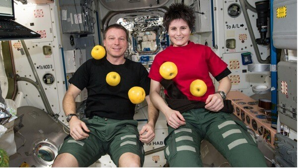 Phi hành gia ăn gì ngoài không gian?