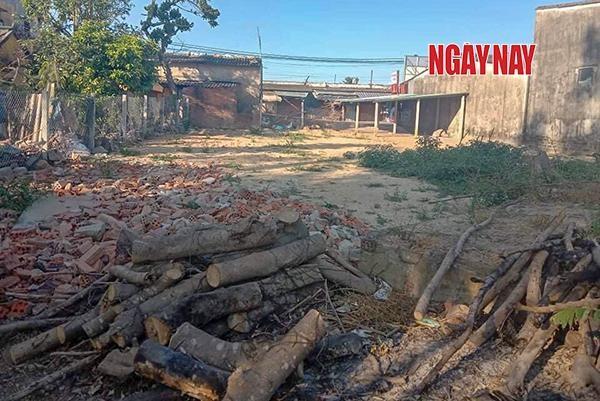 Phần đất trên thửa đất 1177 được ông Quang tháo dỡ lều trại, trả lại hiện trạng. Ảnh: Lê Xuân Thọ