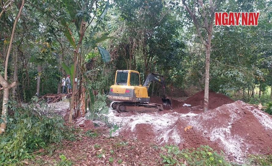 Gần 140 con heo chết ở huyện Thống Nhất, chủ trại mang đi chôn ở Cẩm Mỹ