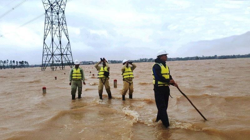 Công nhân Truyền tải điện Quảng Bình kiểm tra lưới điện sau mưa bão, năm 2020. Ảnh ĐVCC.