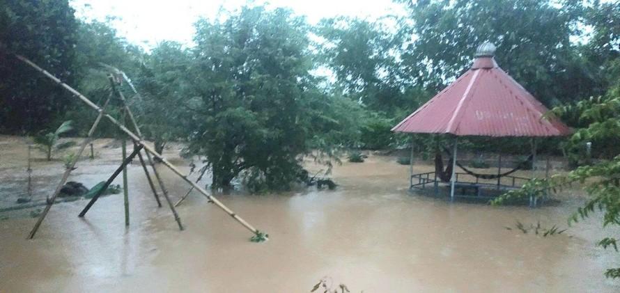 Ao cá của người dân bị ngập, cá theo nước đi mất gây thiệt hại nặng nề.