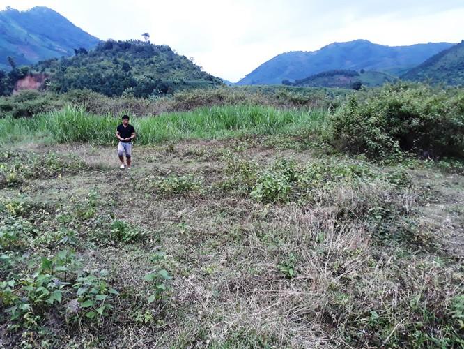 Đất bị thoái hóa bỏ hoang