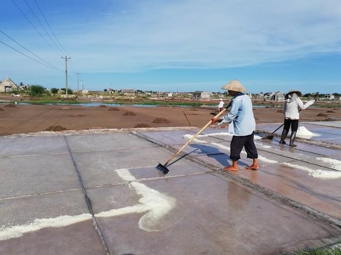 Diêm dân Hải Lý thu hoạch muối sau 1 ngày vất vả