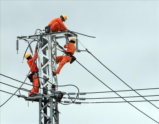 Cải tạo, nâng cấp đường dây đảm bảo phục vụ cấp điện 24/24 giờ trong dịp lễ, Tết. Ảnh: TTXVN phát