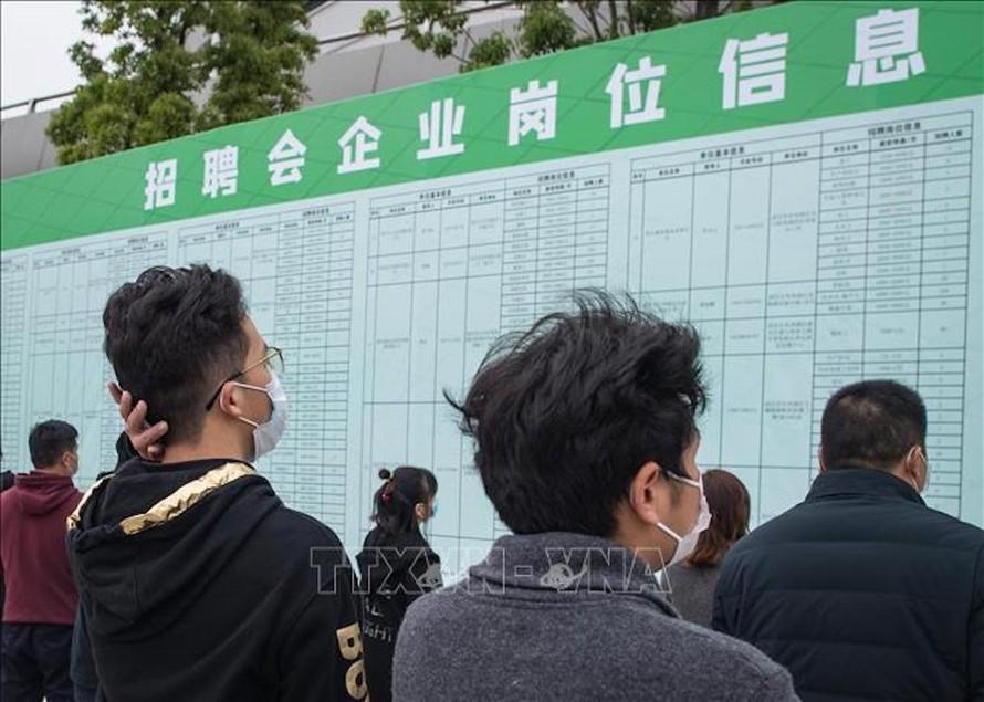 Người tìm việc theo dõi thông tin tại một hội chợ việc làm ở Vũ Hán, tỉnh Hồ Bắc, Trung Quốc.