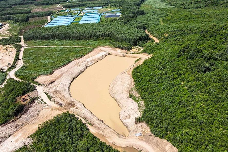 Khánh Hoà xử nghiêm doanh nghiệp xây đập chặn suối làm hồ