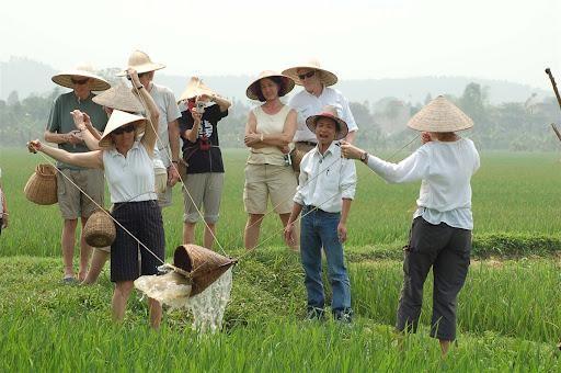 Du lịch Việt Nam: Du lịch nông nghiệp, lợi ích kép của Hà Nội