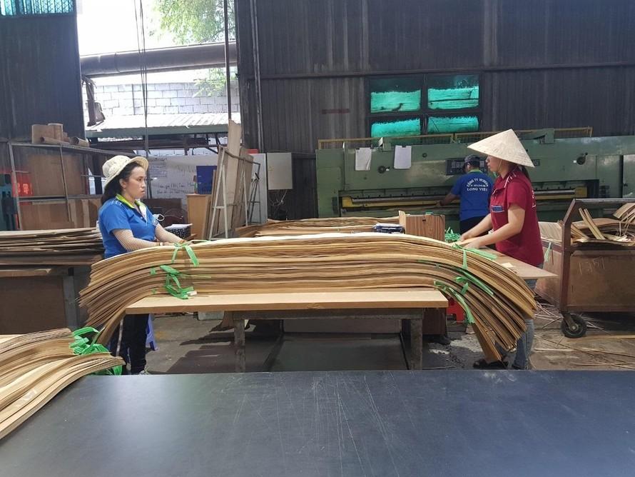 Hoa Kỳ chưa kết luận vụ điều tra chống lẩn tránh thuế với sản phẩm gỗ dán cứng từ Việt Nam
