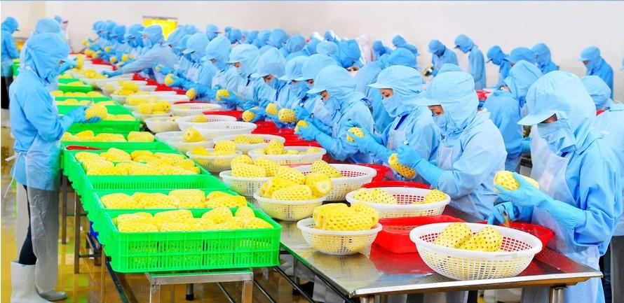 Bộ Công thương: Kiểm soát chặt dư lượng Etylen oxit trong thực phẩm khi xuất khẩu