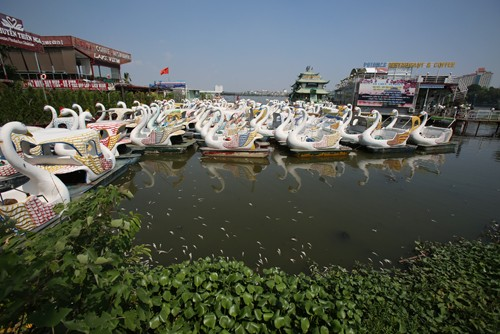 Các hoạt động tại bến thủy hồ Tây sẽ bị tạm dừng hoạt động. Ảnh:Ngọc Thành.