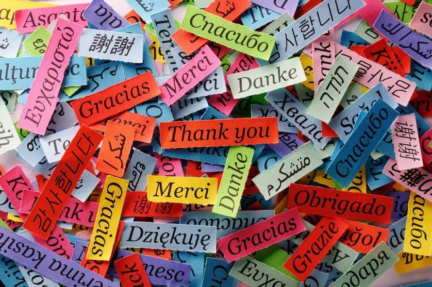 """Từ """"Cám ơn"""" được viết bằng nhiều thứ tiếng (Ảnh: Daily Sabah)"""