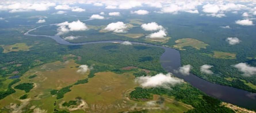 Congo: Vườn quốc gia Salonga được đưa ra khỏi Danh sách Di sản Thế giới đang bị đe dọa