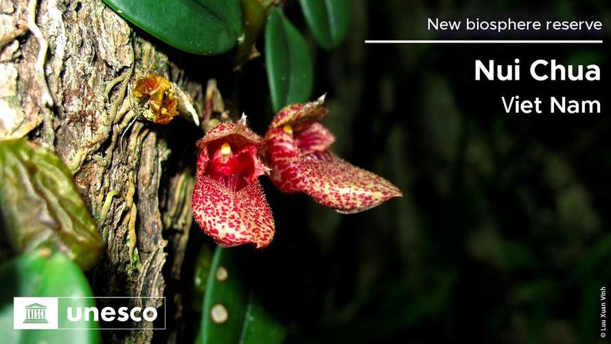 20 Khu dự trữ sinh quyển thế giới vừa được UNESCO công nhận - Phần 1