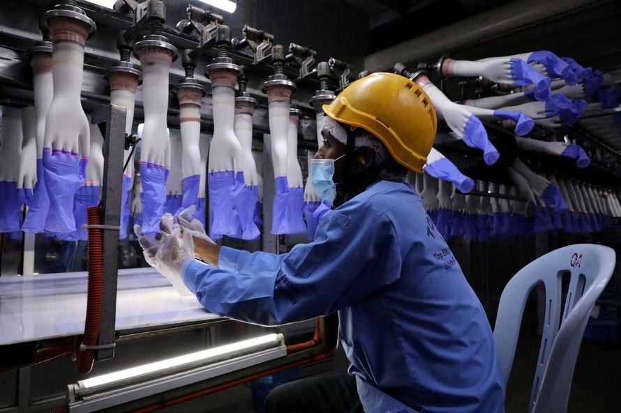 Công nhân kiểm tra găng tay tại nhà máy Top Glove ở Shah Alam, Malaysia. Ảnh: Reuters